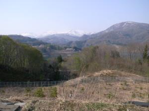 20080430_3.jpg